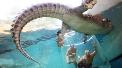 可可洛思鳄鱼湾主题公园5