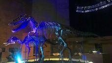 蒙古恐龙中央博物馆