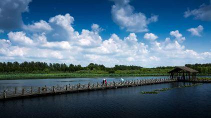 溱湖背景图