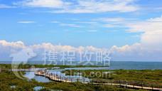 北海金海湾红树林生态旅游区