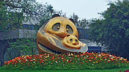 中国-成都-大熊猫基地