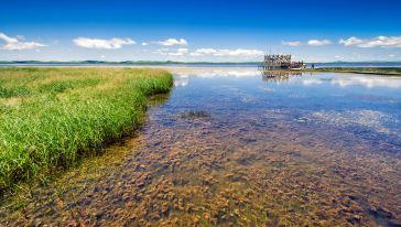 若尔盖 花湖
