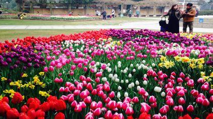 武汉植物园 (20)