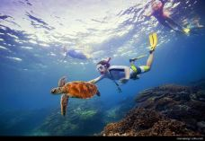 大堡礁-昆士兰-携程旅行顾问旅行屋