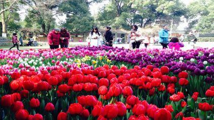 武汉植物园 (17)