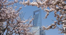 上海环球金融中心94+97+100层成人票