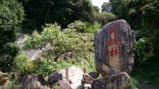 牛姆林自然保护区