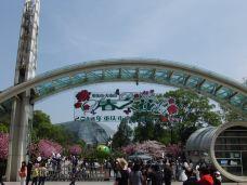 南山植物园-重庆-王刚070707
