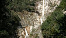 九龙瀑-黄山风景区-盲龟_浮木